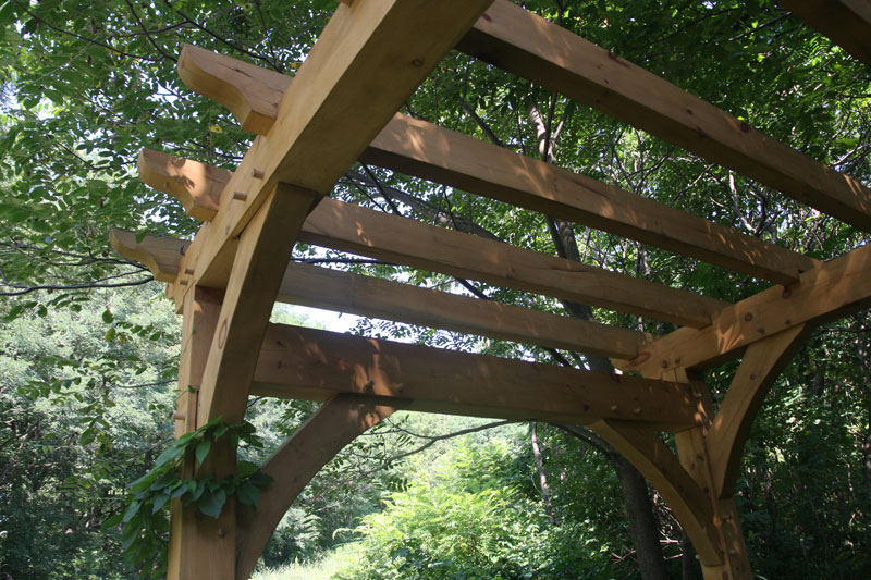 Timber Frame Pergola Purlin - Timber Frame Pergola